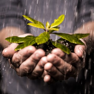 Small Business Web Marketing Lead Nurturing